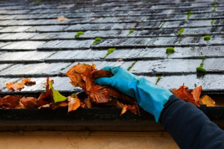 Best Gutter Cleaning Tools For Removing Leaves & Debris From Your Gutters