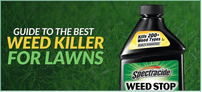 Best Weed Killers in 2020 for Home and Commercial Use
