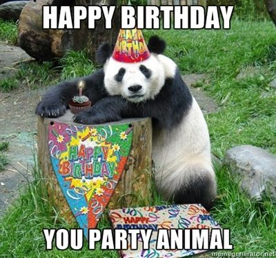 Happy-Birthday-Meme-animal