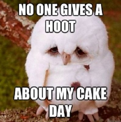 No-One-Gives-A-Hoot
