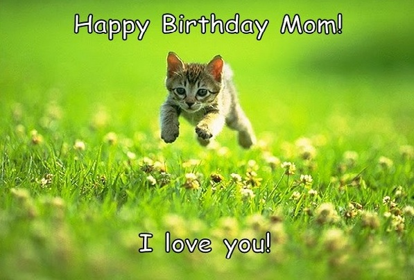 Happy Birthday Quotes Young Lady ~ Funniest birthday memes for you top collections