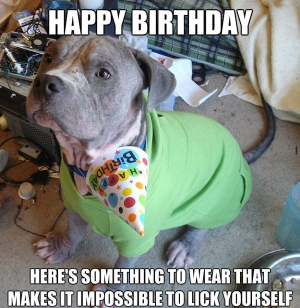 200+ Funniest Birthday Memes For You *Top Collections