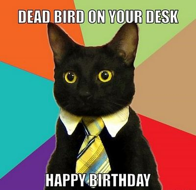 happy-birthday-funny-pictures-3