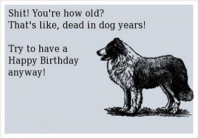 happy-birthday-funny-pictures-4