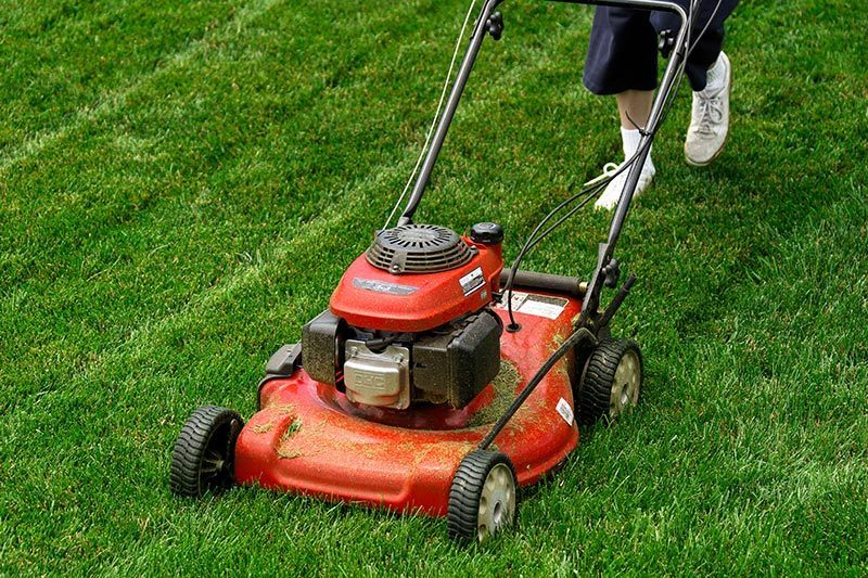 Gas-Powered Lawn Mower