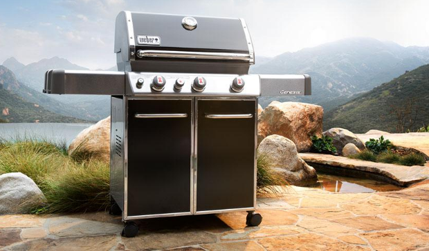 Weber Gas Grill Reviews