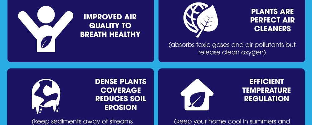 Benefits Of Green Garden Infographic
