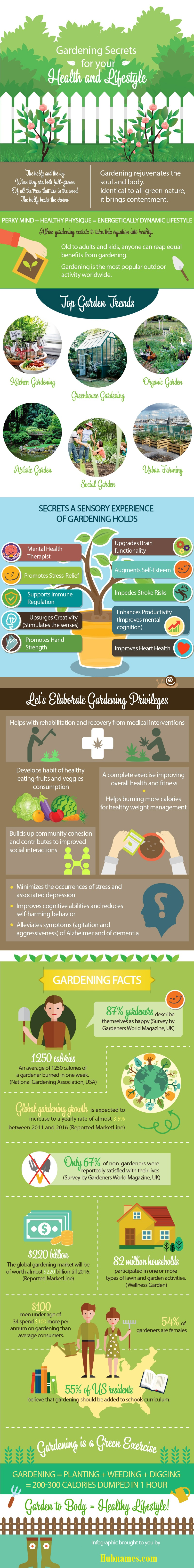 Gardening Secret For Your Health And Lifestyle Infographic