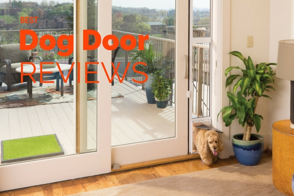 Best Dog Door Reviews Of 2017 Top 20 Rated Picks