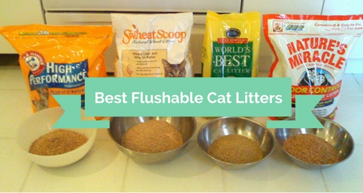 Best Flushable Cat Litters