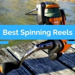 Best Spinning Reel Under $100