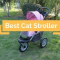 Cat Stroller Reviews