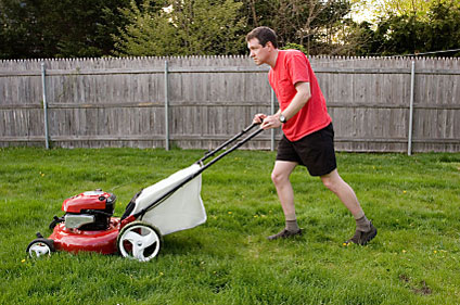 What Should You Notice Of Your Best Push Lawn Mower?