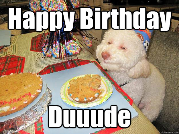 Happy-birthday-dog-meme-4