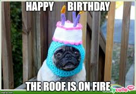Happy-birthday-dog-meme-5