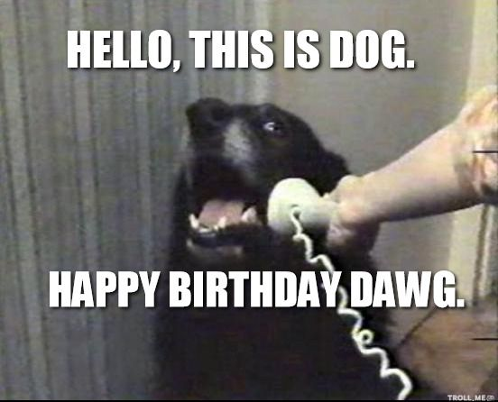 Happy-birthday-dog-meme