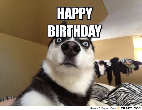 birthday meme dog