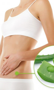 Aloe-Vera-Reduces-Stretch-Marks