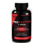 Profactor T-2000 Review: Build a Great Body for Strength and Performance