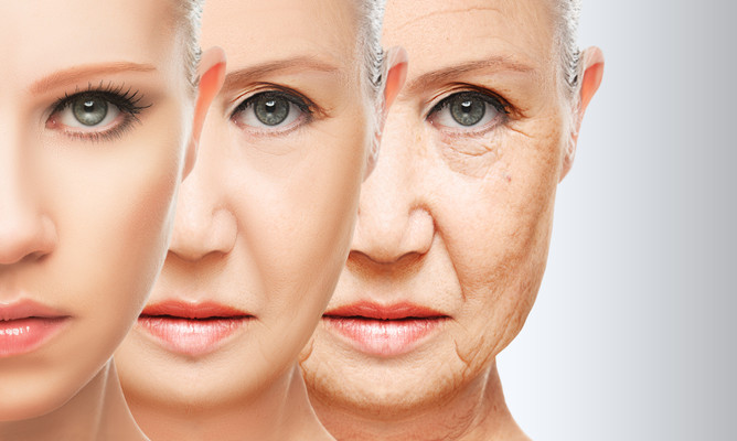 Why Is It Important To Understand The Aging Process?