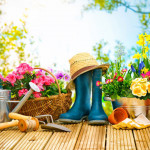 5 Gardening Benefits To Motivate You!