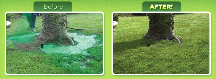 Hydro Mousse Liquid Lawn Reviews
