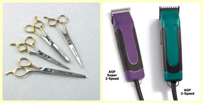 Scissors vs clipper
