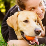 Benefits of Adopting an Older Pet