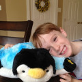 pillow-pets-and-boy