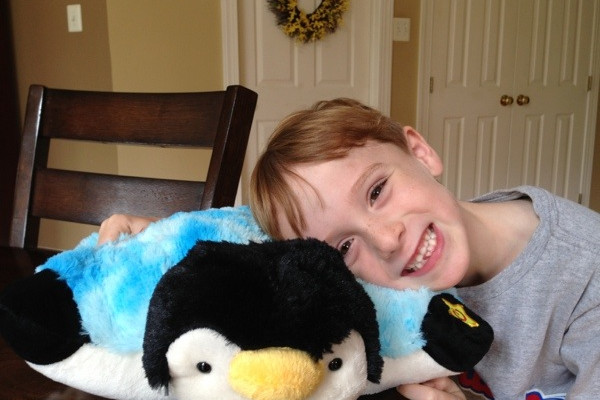 Pillow Pets Review