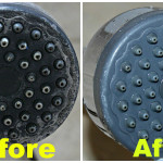 How to Clean the Shower Head