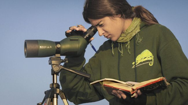 The 5 best spotting scopes in 2020